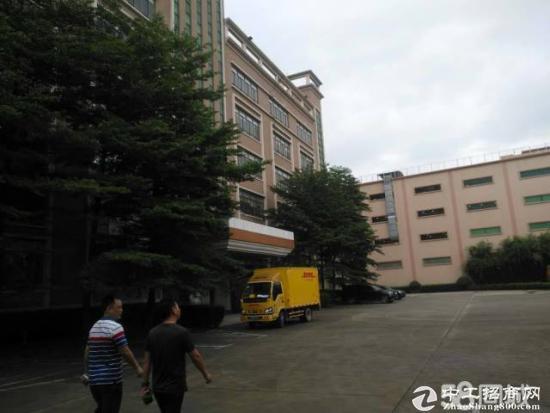 松岗南光高速口带红本厂房5万平米厂房招租-图3