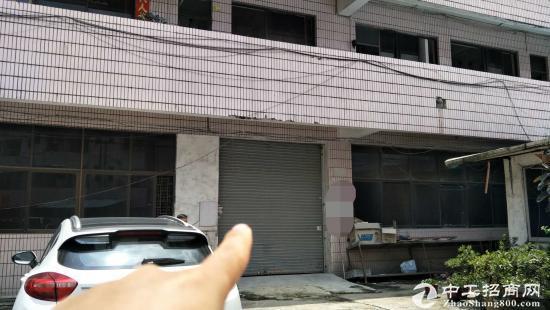 厚街镇陈屋村新空出厂房一楼500方,区域交通优势显著
