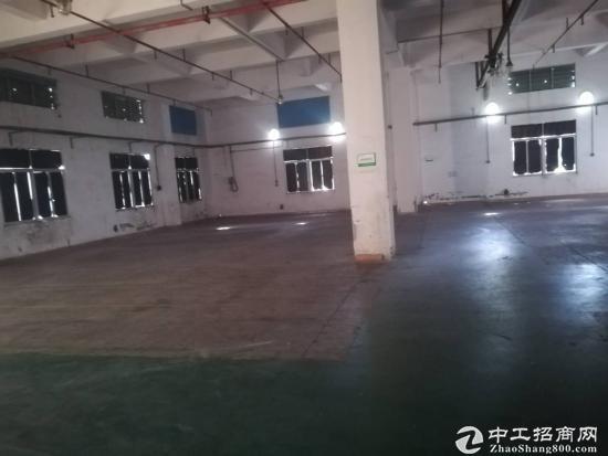 独家新闻厚街镇新出丙类化工仓库2000平,宿舍办公1000平