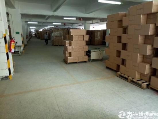 厚街镇嘉华酒店附近三楼厂房整层2500方带三吨大货梯两部可做仓库