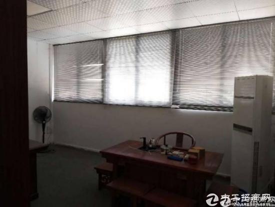 厚街镇新塘村主路边3楼500方豪装办公厂房带标准电梯一部招租