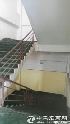 布吉上李朗工业区新出460平仓库出租