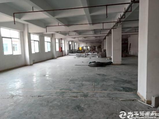 厚街镇赤岭高新科技园厂房招租,有喷淋,主线保留未拆