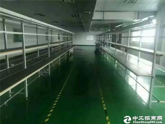 公明李松朗高速出口附近精装3楼1200平出租