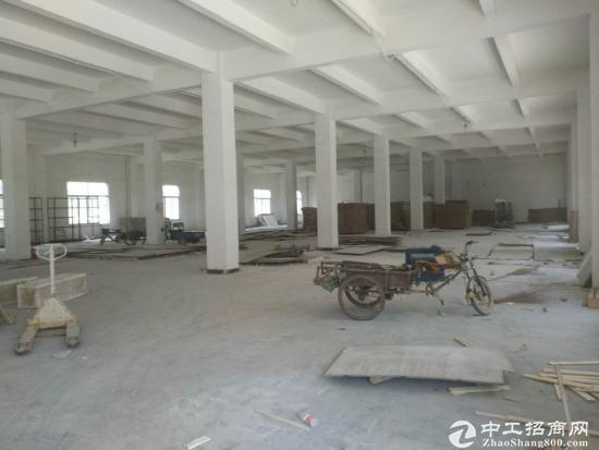 坑梓新出独院一楼1250平米,层高5米