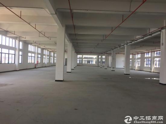 国家级坪山红本生物产业园楼上500平起招租