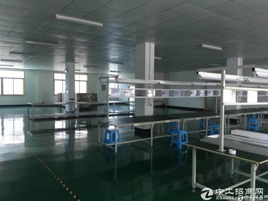 标准独门独院三楼已空出500方带地坪漆厂房,业主直租面积实在