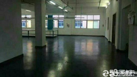 环岗村实业客分租二楼整层770平方,有地坪漆,有隔好的现成仓库