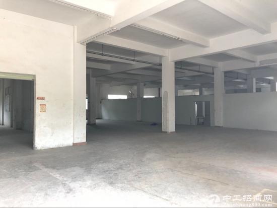 坪山青草林工业区标准厂房一咯偶450平方招租