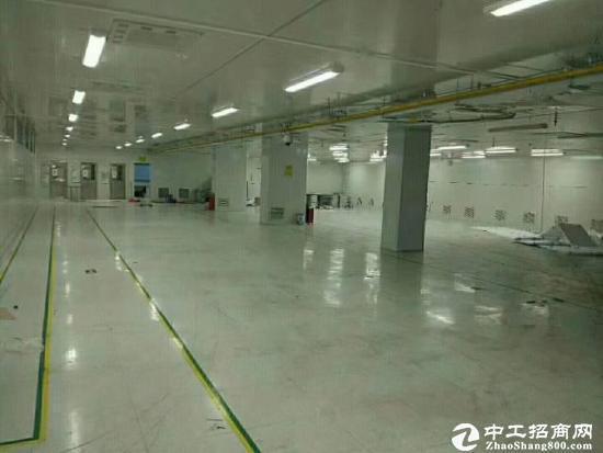 坪山大工业区 带装修楼上2200平厂房出租