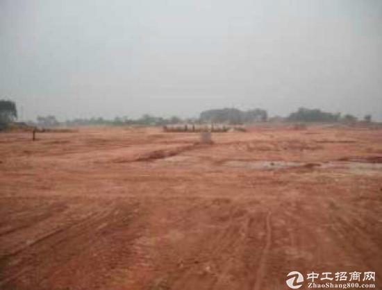 深圳周边惠州电子信息产业基地出售红本地皮