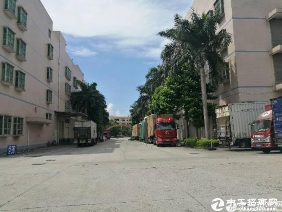 石岩洲石路物流仓库1-4层13700平方厂房招租