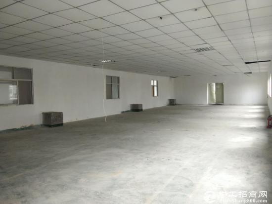 南山西丽一楼300平米仓库出租