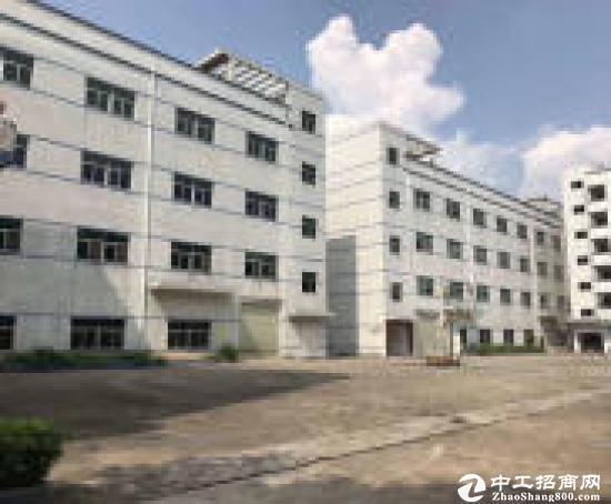 惠阳镇隆原房东12000平方独院标准厂房出租