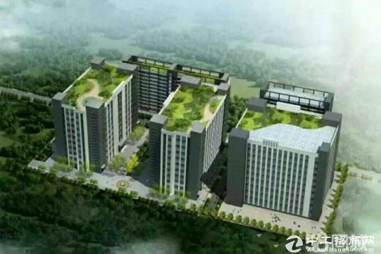 南山西丽大型红本高新园38000平米火爆招租大小-图3
