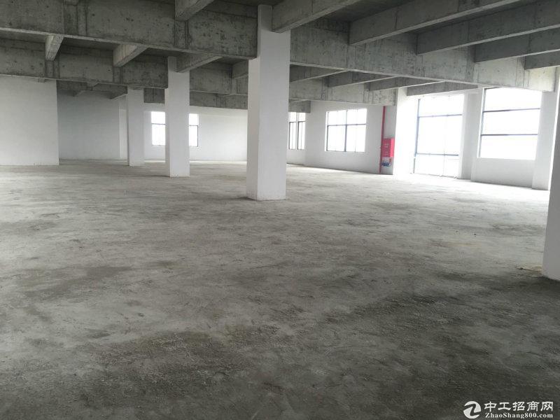 银行按揭 3成首付 肇庆市附近可分割独立产权厂房出售-图5