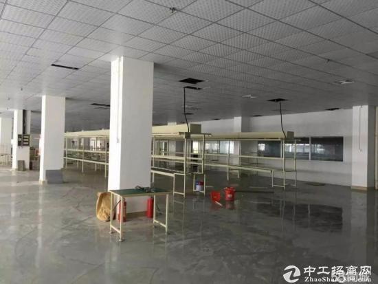 五联原房东带装修楼上1400平招租 无转让费-图2