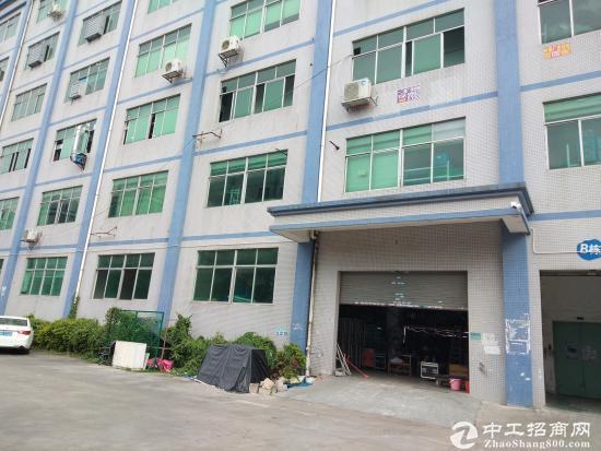 (出租) 上雪科技园新岀厂房带简单装修,300至1300平米