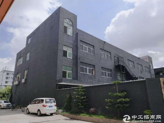 龙岗宝龙新出楼上豪华装修办公展厅1280平低价出租