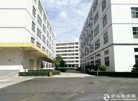 四联一楼厂房1200平 高6米 大小可分