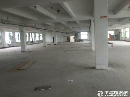 平湖良白路旁工业区附近3600平米新出厂房招租