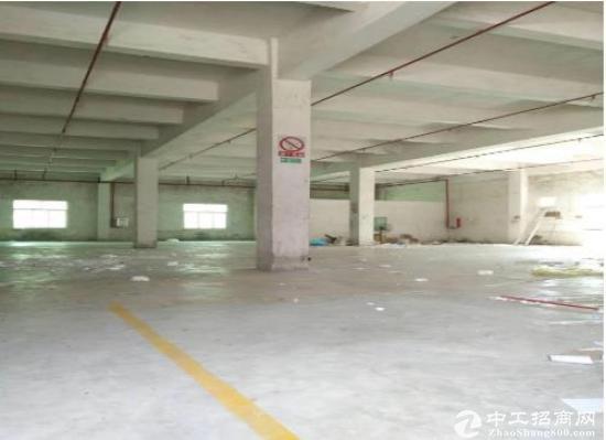 坪山大工业区红本楼上3280平方精装修吊顶厂房招