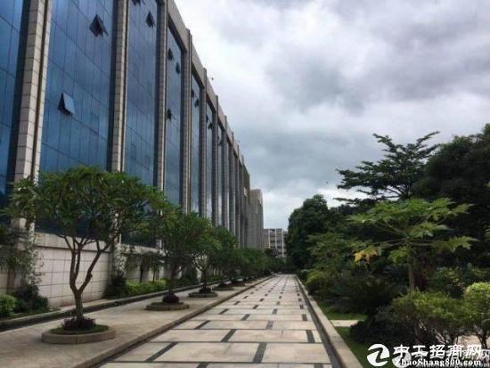 西丽茶光装修办公万博app官方下载255平招租