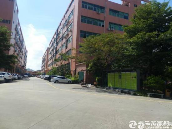 标准厂房一楼可分租650平900平1500平