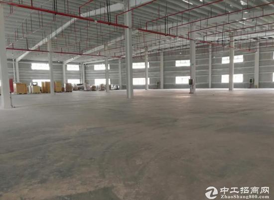 惠盐公路边 钢构仓库5000平米 大平台
