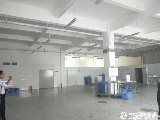 原房东一二楼1200平龙岗厂房出租招租嶂背同乐-图2