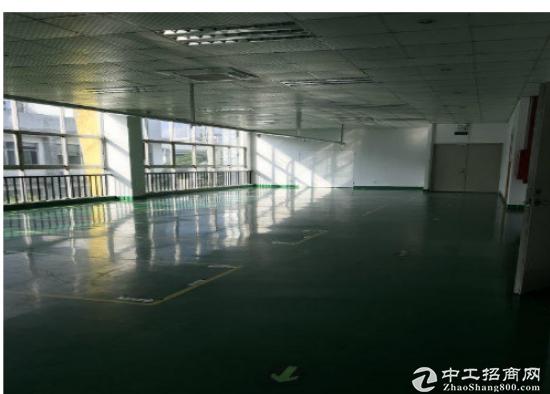 出租) 龙华观澜 1580平 一楼厂房 业主直租 已空置