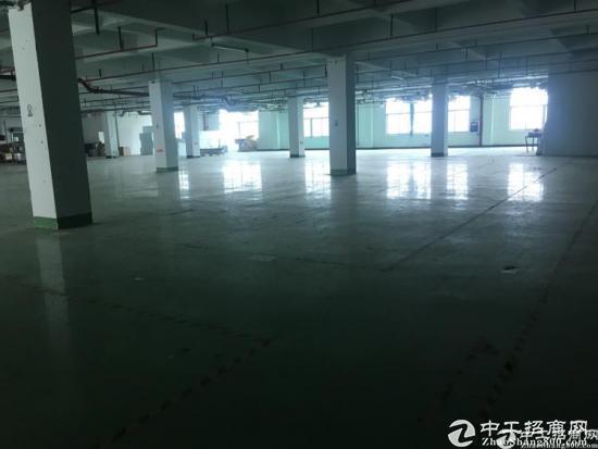 厚街镇莞太路旁独院厂房楼上整层1750平方消防喷淋地坪漆覆盖