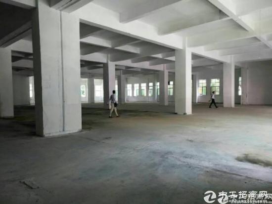 石岩一楼2500平六米高标准厂房大小可分租