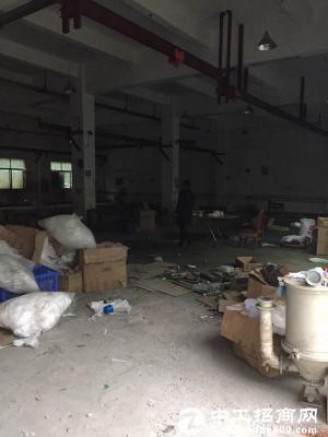 坪山石井工业园区独院厂房一楼500平出租