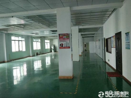 龙岗厂房500平700平1000平带装修办公室地坪漆-图5