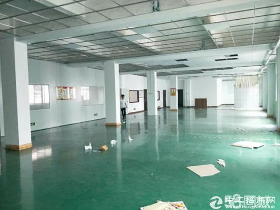 龙岗厂房500平700平1000平带装修办公室地坪漆-图2