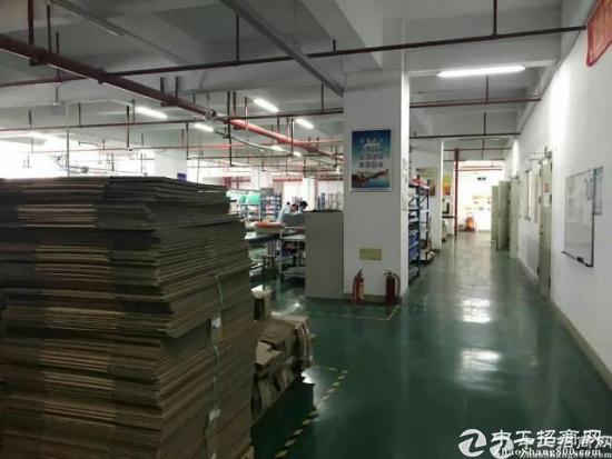 南山西丽百旺信工业区1400平带装修厂房出租