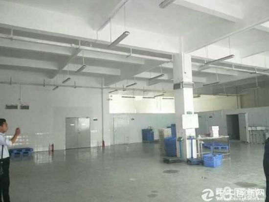 龙岗同乐 带装修一楼1150平 有办公室有地坪漆-图2