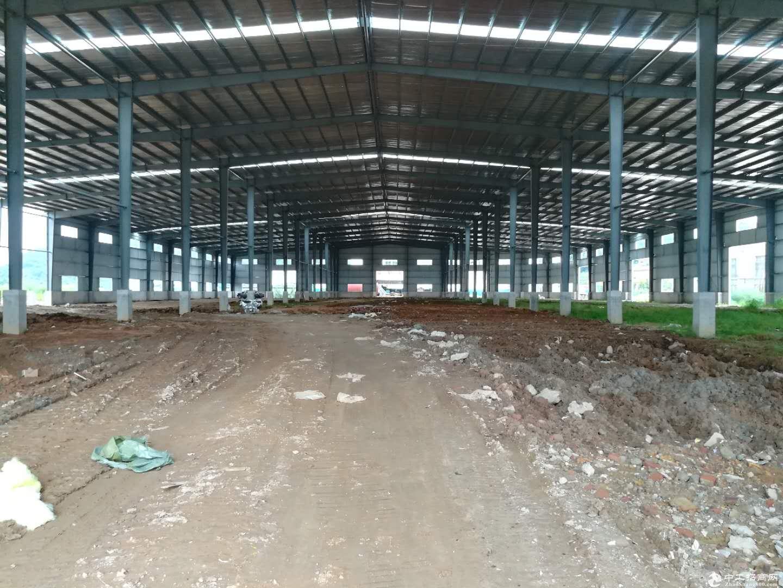 蓬江荷塘工业区全新独院单一层带隔热层厂