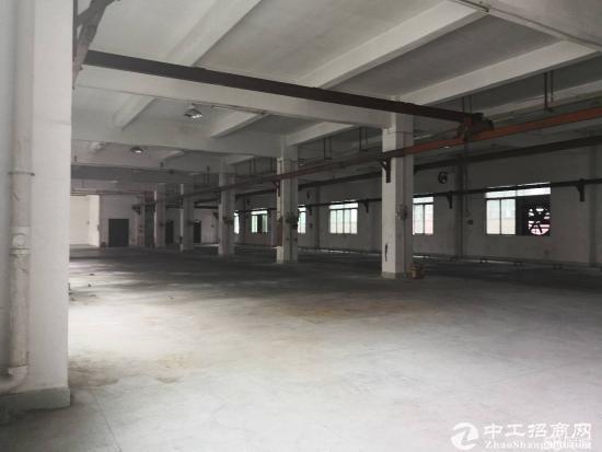 龙西学园路新出一楼1200平厂房出租现成水电