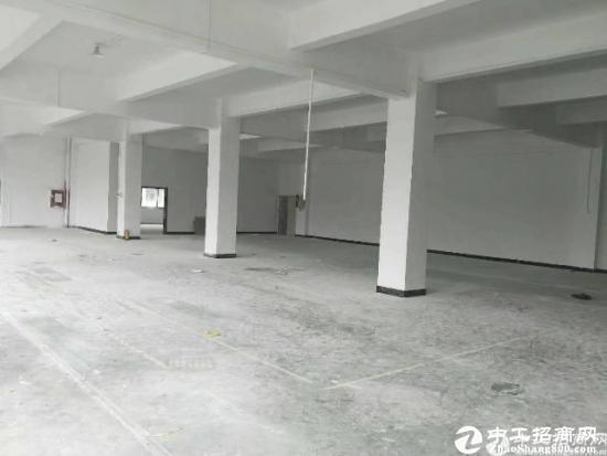 厚街镇陈屋村新出3楼1200平米标准厂房招租