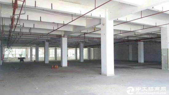 龙岗中心城5300平米独栋厂房出租