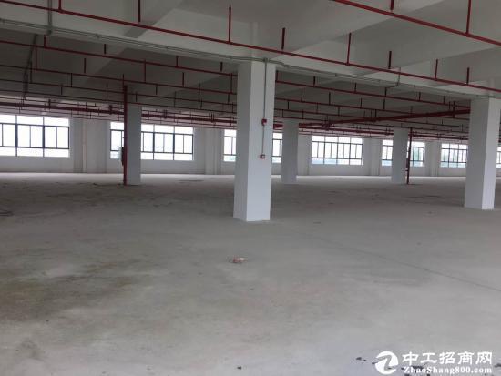 龙岗大道边原房东红本独院厂房出租13000平米