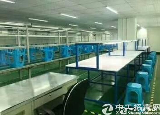 宵边新出精装修厂房一整层900平方低价出租