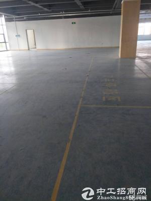 龙岗新出楼上2000平标准厂房带电梯消防精装修-图2