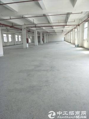 龙岗新出楼上2000平标准厂房带电梯消防精装修-图8