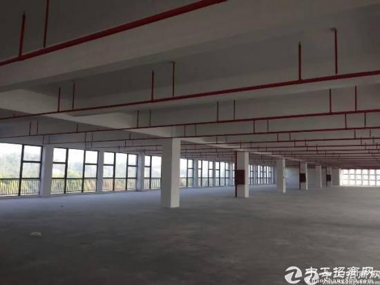 龙岗坪地北通道高新产业园约30000平米出租