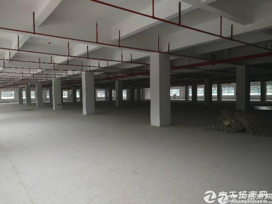 布吉新出原房东独院一二楼厂房5200平米大小可以分租