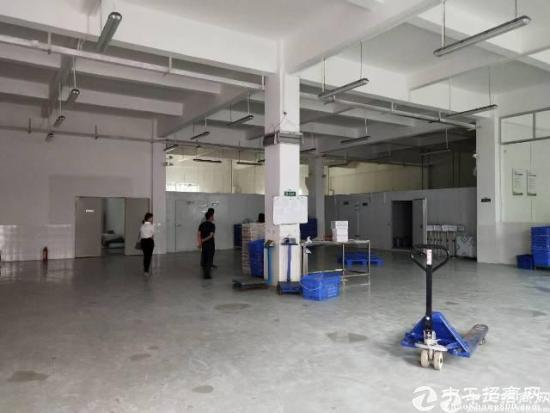龙东独院3层2800平米厂房出租