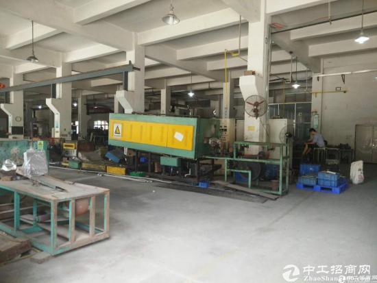 龙岗嶂背新出一楼标准厂房1200平米,带装修